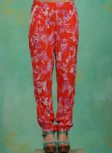 Hose, Going Easy Pants, tangerine-tropical